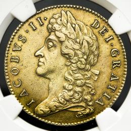 GREAT BRITAIN James II ジェームス2世(1685~88) 5Guineas 1687 NGC-AU50