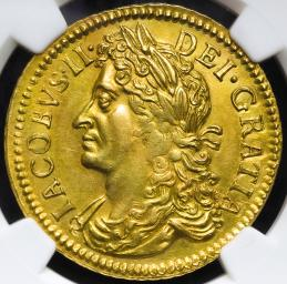 "IRELAND アイルランド Gunmoney 1/2Crown in Gold 1690""Apr"" NGC-PF50"